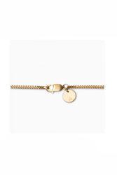 Curb Chain 40 cm Gull