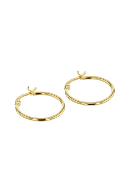Rocks Gold Hoops Gull