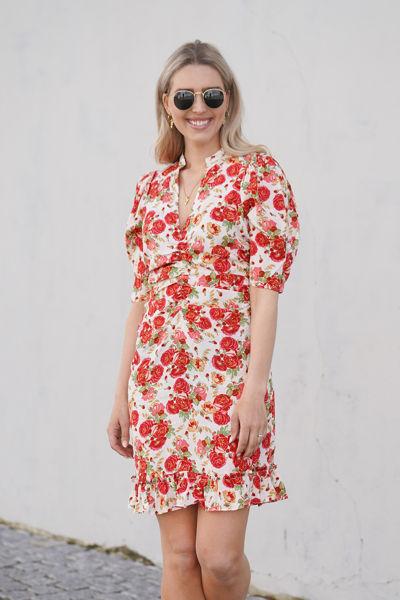Delicate gathers mini dress Rose garden